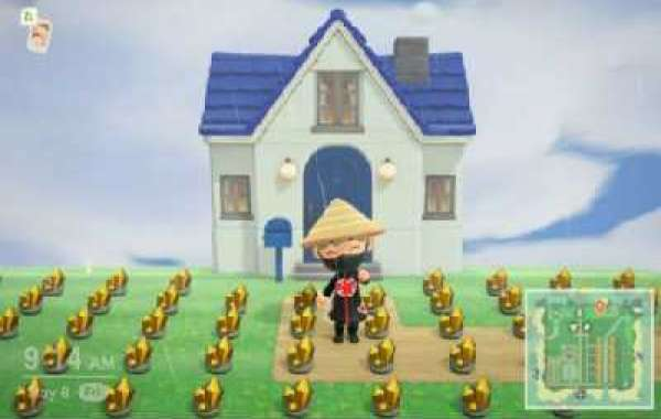 Which you use to Animal Crossing New Horizons Bells