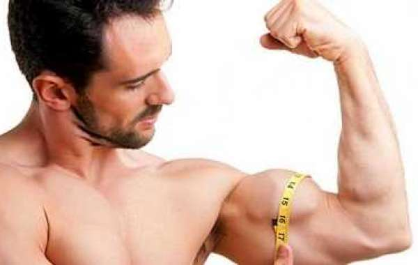 Precisely how to Build Lean muscle and Still Suffer defeat Stress