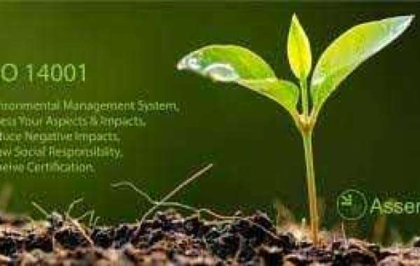 Scope and procedure of the Environmental Management System for organizations in Kuwait?
